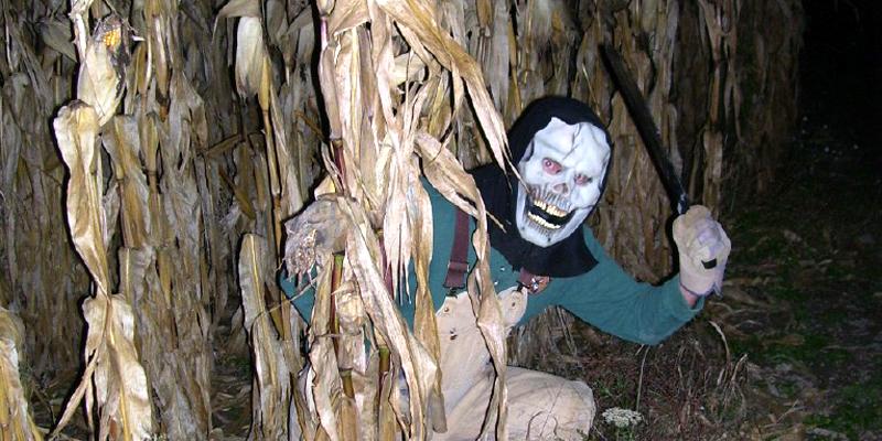 Photo of Haunted Maze 1