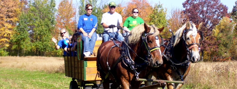 Photo of Hay and Sleigh Rides 18